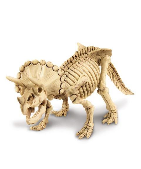 Descubre un Triceratops