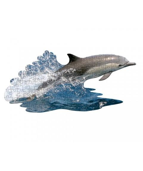 Puzzle Delfín